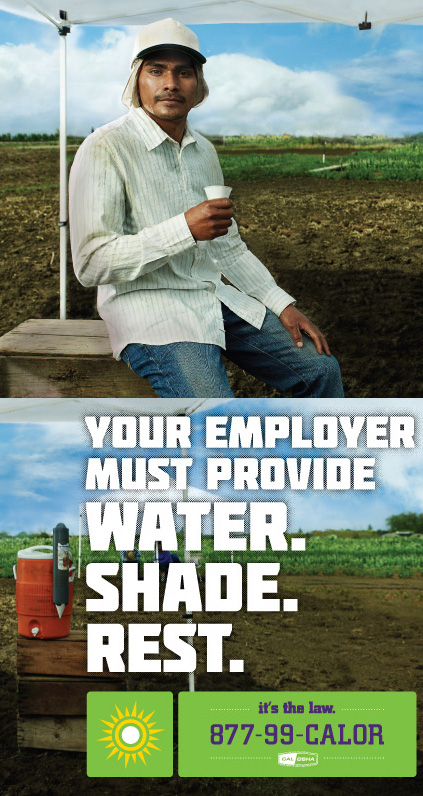 Agricultural worker drinking water.